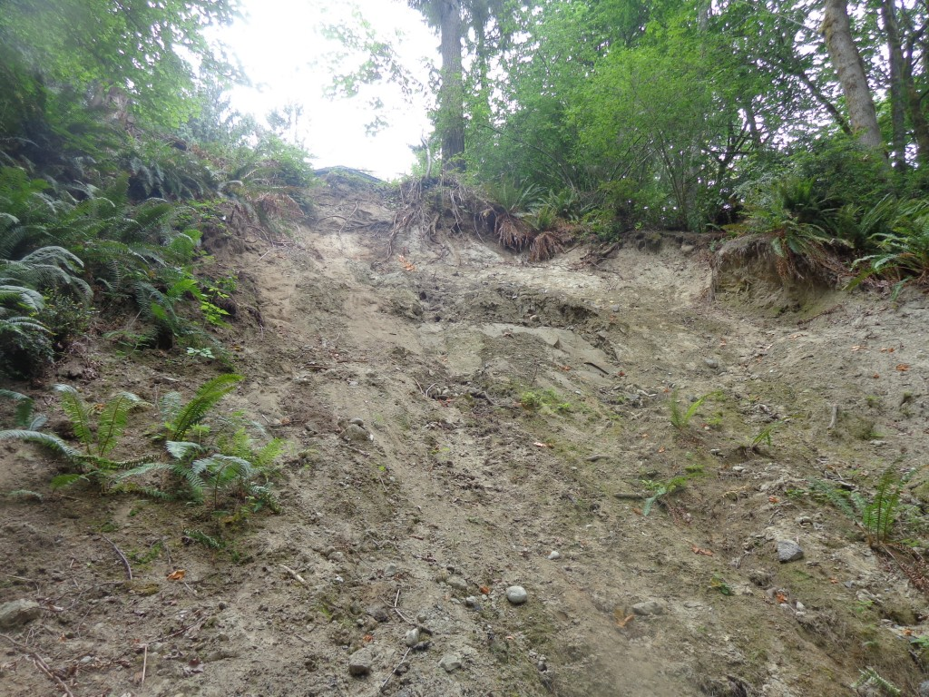 Mud slide JUL2017 006
